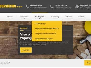Business common website