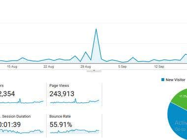 Grew Traffic for Adsense Blog