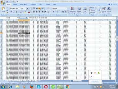 Excel Data Entry.