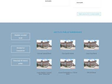 Website Design for Public Authorities