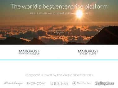 CMS- wordpress and Joomla Websites