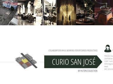 HILTON SAN JOSE, COSTA RICA. INTERIOR DESIGN