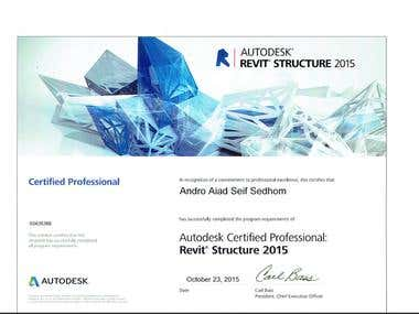 Certified Professional From Autodesk .
