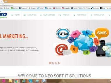 wordpress, Design & Development, SMO,
