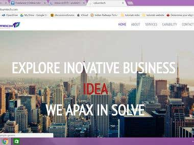 Our Web Designing Work