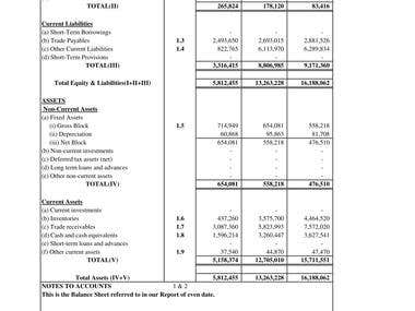 Projected Balance Sheet Working