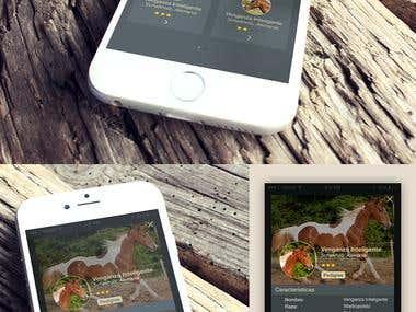 UI design for a Horse App