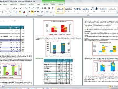 Financial & Credit Analysis Report