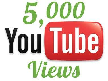 I can Provide you YouTube Video Views.
