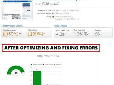 SEO Optimization Sample TaltentC