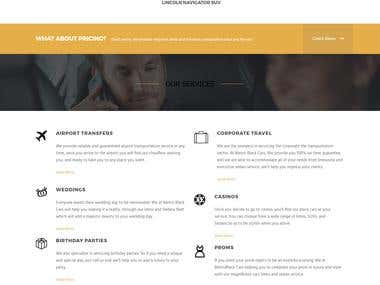 WordPress Premium Theme Customization