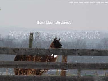 www.burntmountain.com