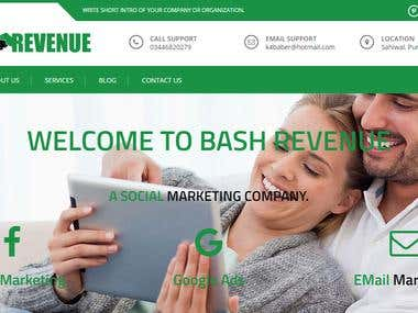 WordPress Theme Development http://www.bashrevenue.com