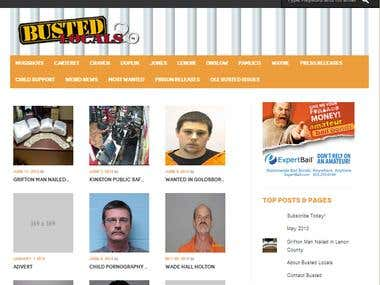 Criminal Case In Wordpress