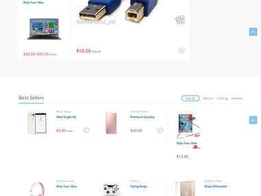 Develop Electronic web store website.