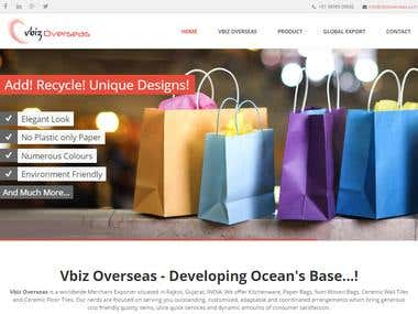 Vbiz overseas- web site development