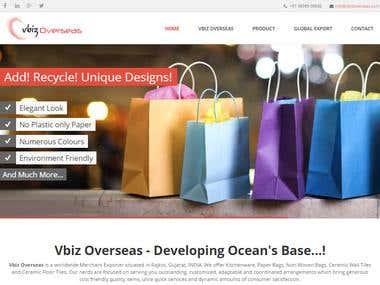 Vbiz overseas- web site development