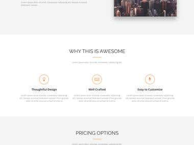 Axit Wordpress site