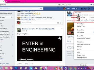 Facebook Page Handling Task