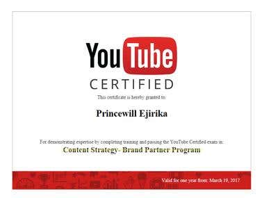 YouTube Certified, Content Strategy - Brand Partner Program