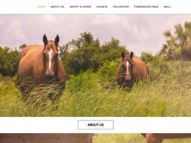 company website for horse