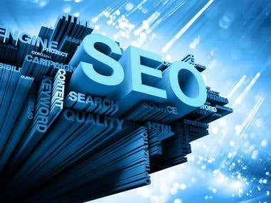 All In One SEO Service