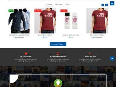 Wordpress E-commerce Online Store
