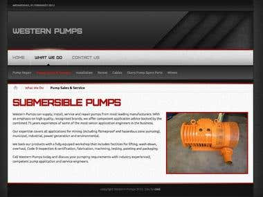 Western Pumps Web Site