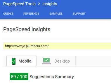 Google PageSpeed Optimization