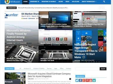 Website Management, IT Journalism