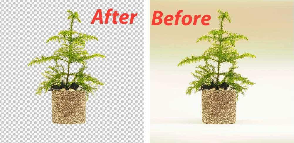 Image Editing & Background Removing