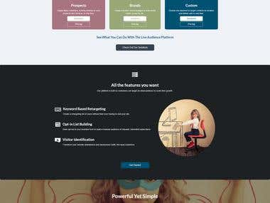 "Customization WordPress Theme ""Live Audience"""