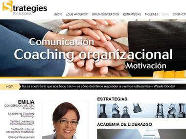 Strategies Website
