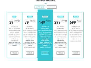 Virtual Website