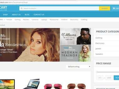 E-commerce Website http://cityinfotech.com/demo7ecommerce