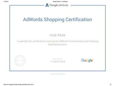 Google Shopping Exam Certification
