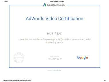 Google Video Advertising Exam