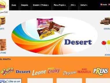 Romdil - website design