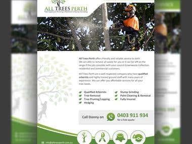 Professional Brochure Concept