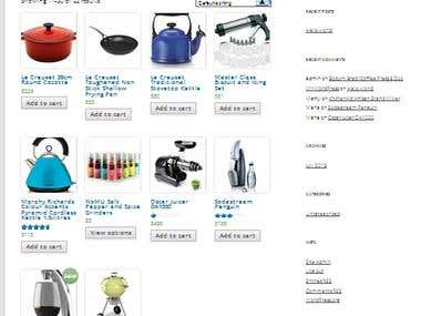WordPress Ecommerce Site