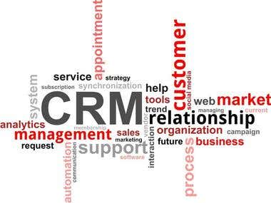 Customer Relationship Management (CRM) Expert