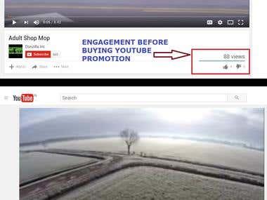 Youtube Promotion Sample