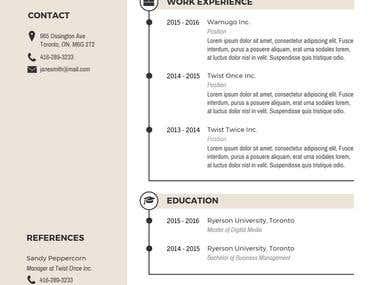 Infographic Resume 4