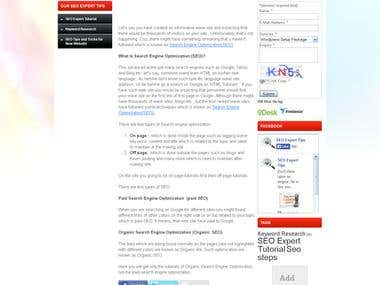 Wordpress Blog Site