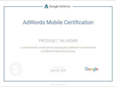 Google AdWords Mobile Advertising certification.