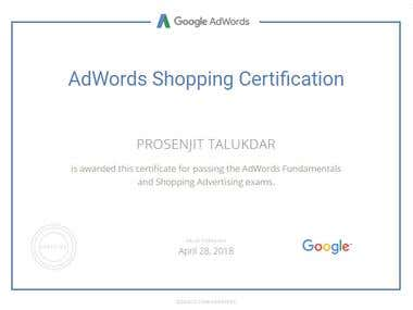 Google AdWords Shopping Advertising certification.