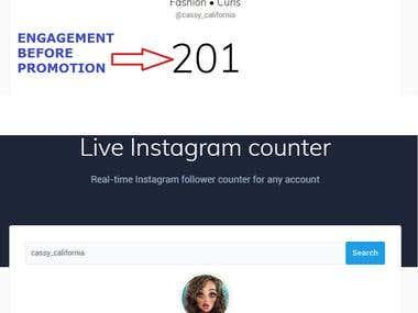 Instagram Promotion Sample