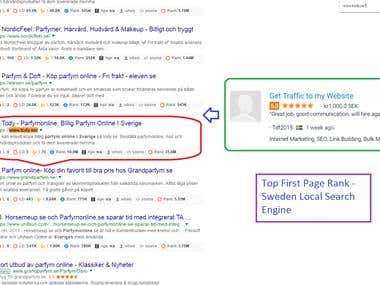 Top First Page Rank in Sweden Local Search Engine