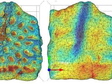Thermal analysis back of dinosaur