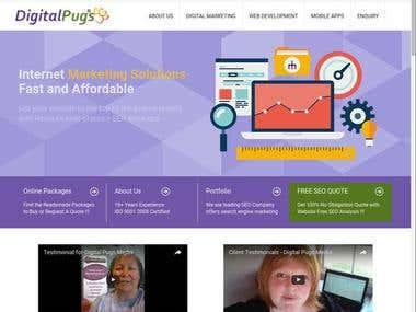 Digital marketing company services showcase portal.